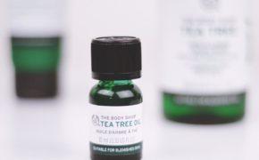 So sánh tinh dầu tràm trà của The Body Shop và Rebirth Life